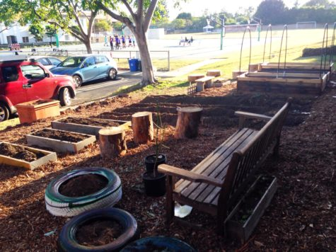 Planting the future: Re-envisioned garden pilots sustainable campus