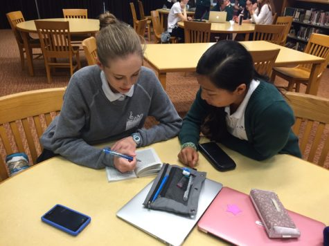 PAWS provides helping hand to students