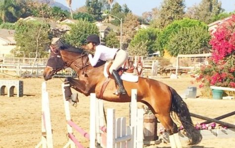 Q&A with 2016-2017 equestrian captain Logan Connors