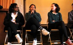 Diving into diversity: faculty of color in independent schools