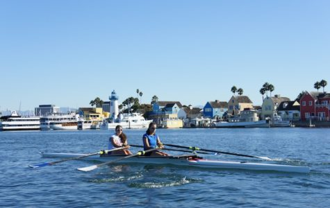 A Rise in Rowing