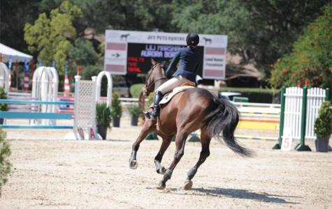 Equestrian: The First Quarter Upshot