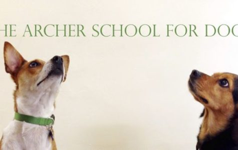 Kuma and Ziggy ponder a new name for Archer. Photographer: Syd Stone '16