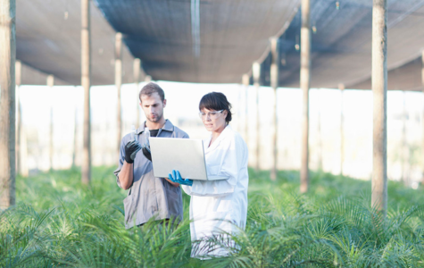 Two Scientist in a Plant Nursery Photo By: Zero Creatives