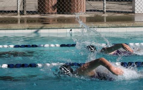 Varsity Swim a 'Little Swim Family,' Says Athlete