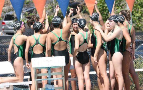 Varsity Swim Finishes Season Strong