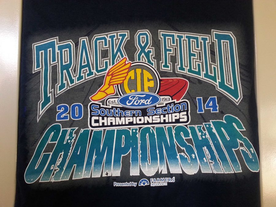 The matching shirts the 7 runners bought to remember their experience together in Carpinteria,CA.