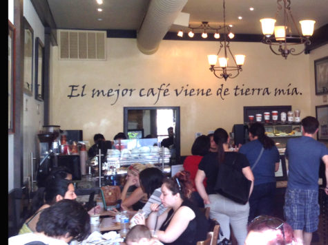 Tierra Mia Challenges Traditional Coffee Shops