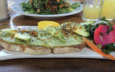 Veganism at Archer
