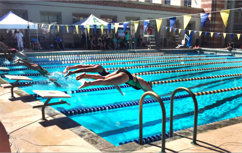 Archer Varsity Swim Team finishes record-breaking season, wins league