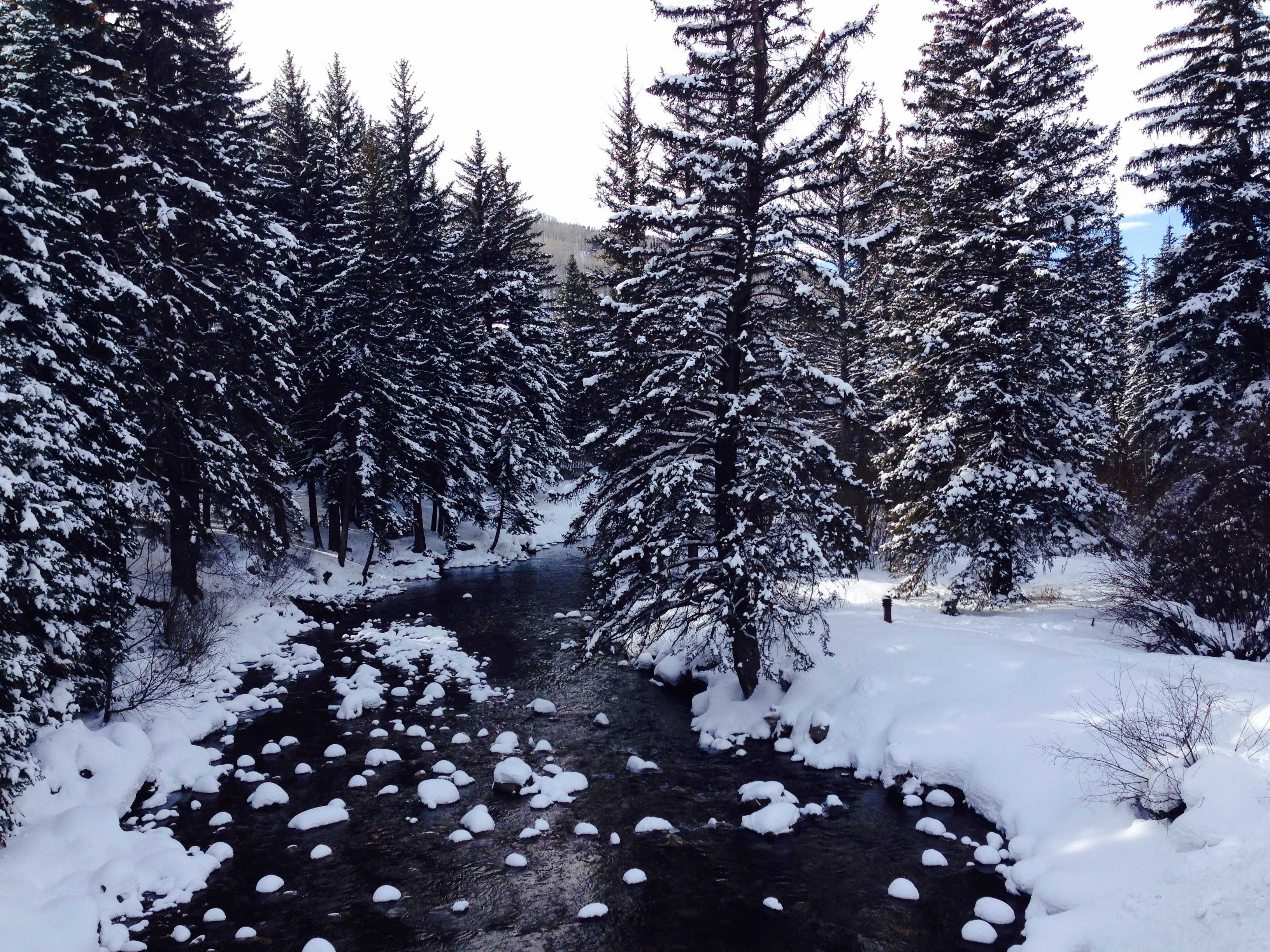 A river freezes in Vail, Colo. One thing that might be helpful when trying to cool off at school is to imagine a scene like this in the cold. Photographer: Syd Stone '16.