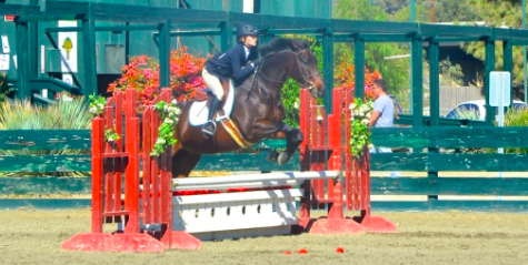 Chloe Davenport takes a jump on her horse. She participates in hunters and equitation.