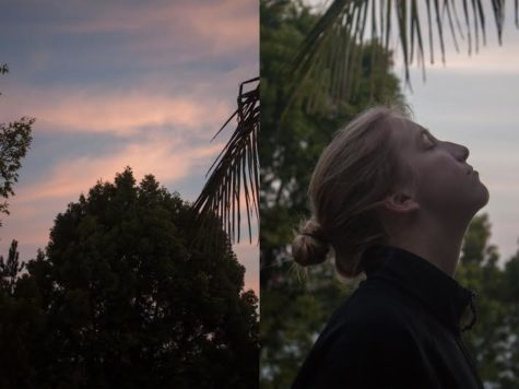 Haley Jamieson '16 compares human emotion, nature in senior photography exhibition