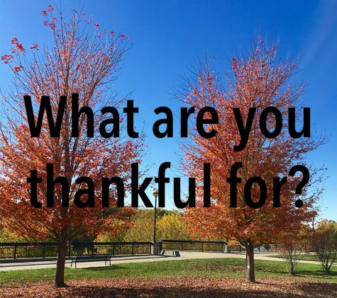 Video: What are Archer girls thankful for?
