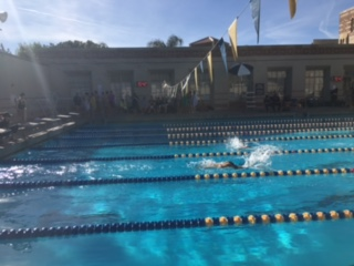 Varsity swim makes Archer history at League Championship, CIFs