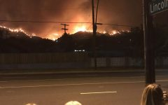 Extreme temperatures cause largest fire in Los Angeles history