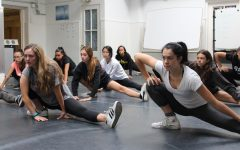 Professional dancers teach master classes to Archer Dance Company, Troupe