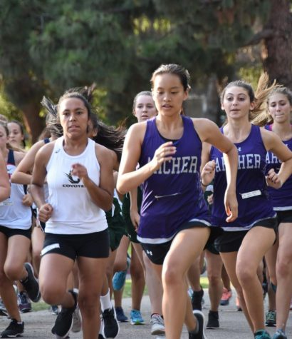 Archer cross country runs to Liberty League finals