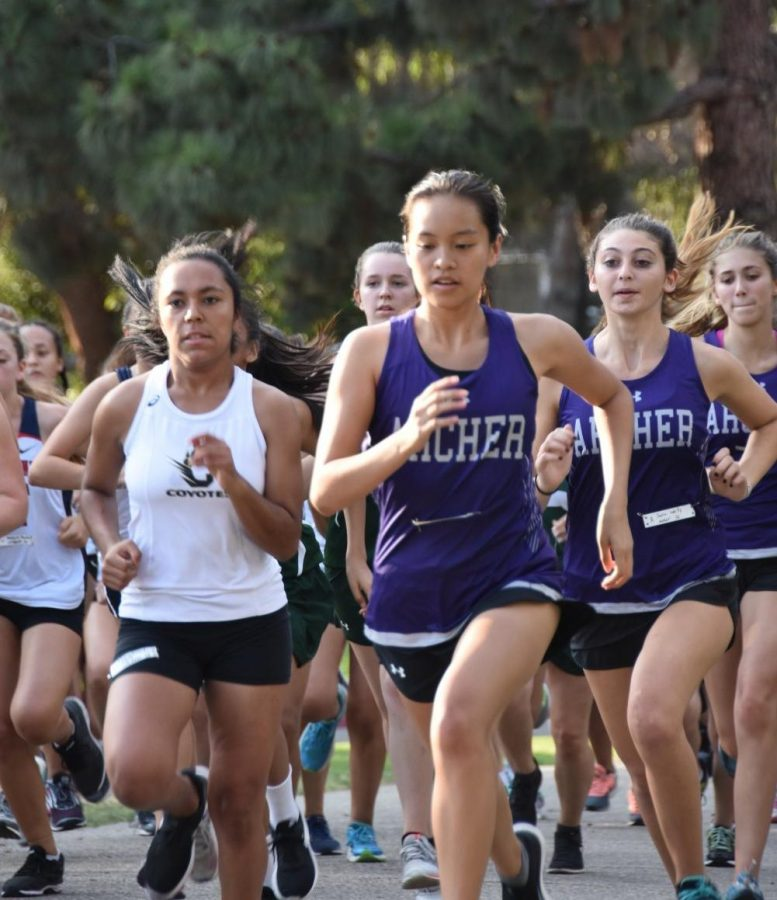 Caitlin Chen 19 leads the Archer runners in a meet.  Followed behind her is Sara Weitz 18 and Lily Horton 18.