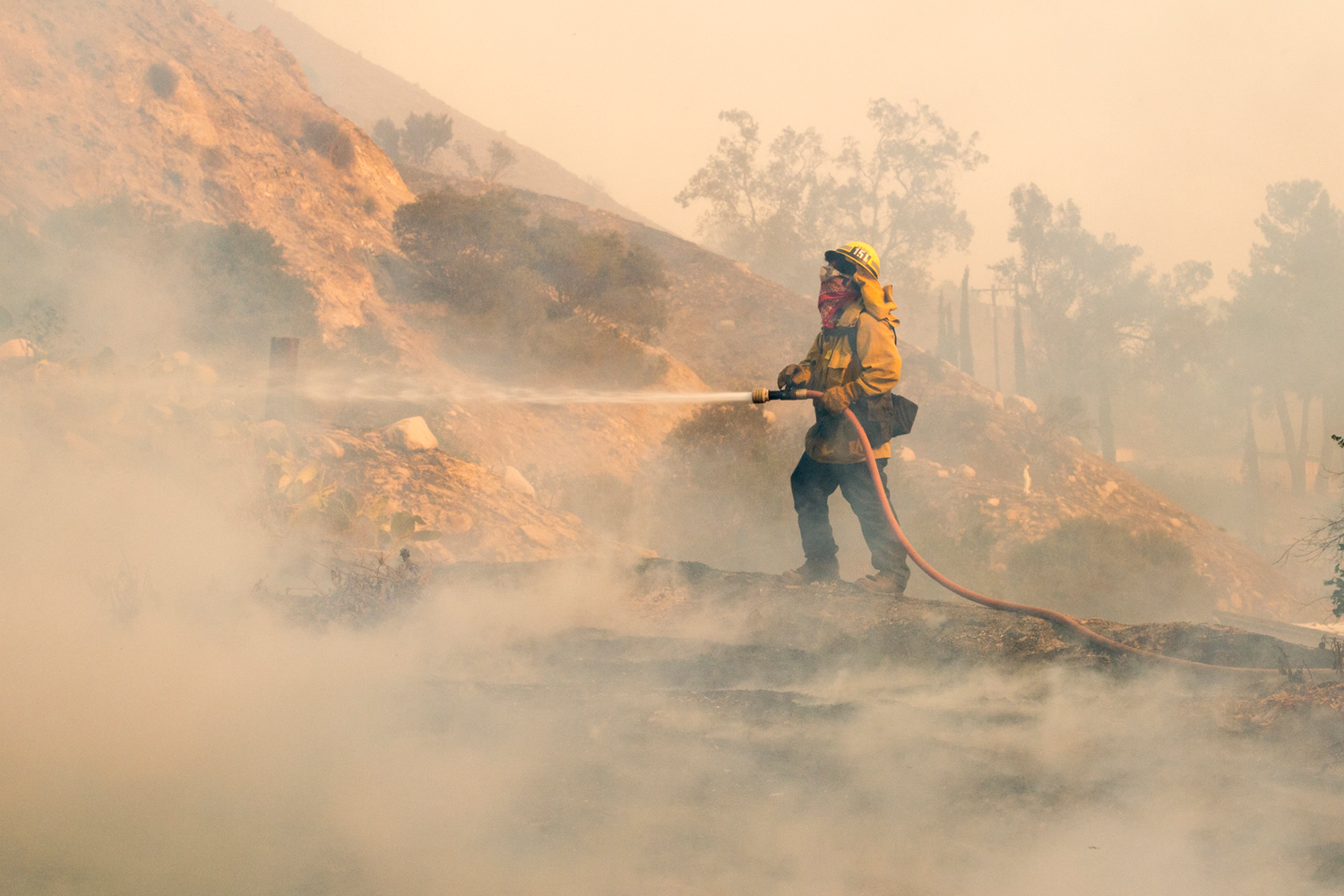 A Los Angeles County Fire Department firefighter battles the Creek Fire on Tuesday. This week's fires have been especially bad due to extreme Santa Ana winds. Image source: LA County Fire Department.