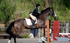 Saddling up: Equestrian team participates in first show of season