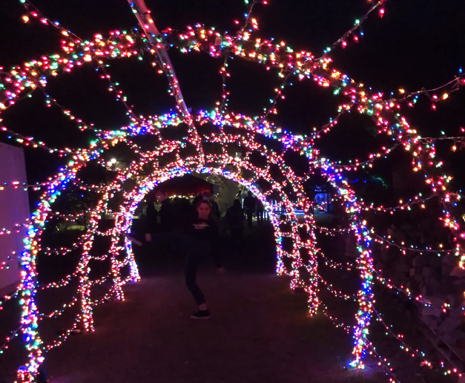 Columnist Grace Wilson frolics through a tunnel of lights at the entrance of the Street Food Cinema. Street Food Cinema was launched in 2012 and has locations from King Gillette Ranch in Malibu to the LA Arboretum in Arcadia.