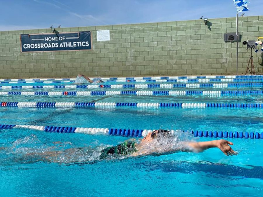 Hannah Park '19 swims backstroke at a swim meet at Crossroads School. Park and Juliet Youssef are the two varsity swim team captains.
