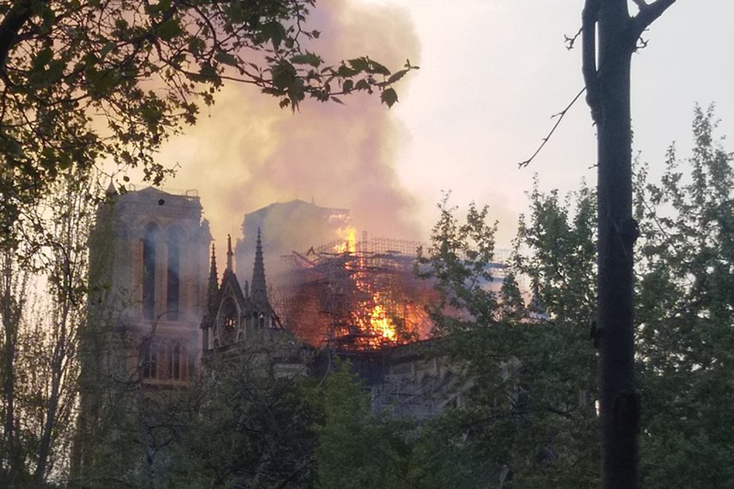The Notre Dame Cathedral caught on fire April 15 at 5:30 p.m.