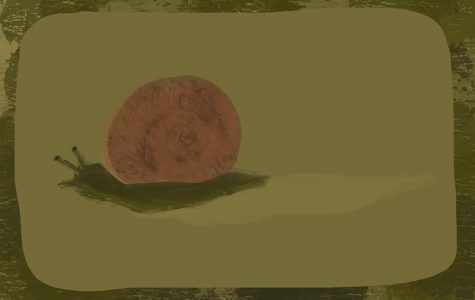 Column: Stereotypically slimy snails