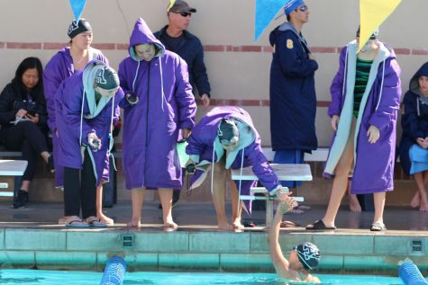 Diving into victory: Varsity swim team reflects on 'amazing' year
