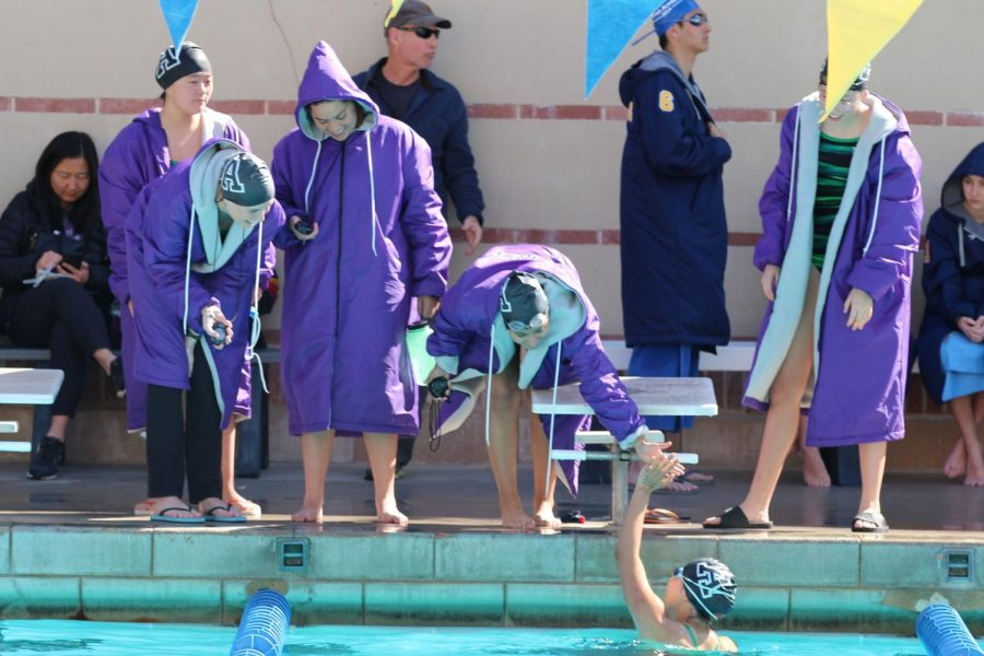 Members+of+the+swim+team+high-five+each+other+during+their+last+meet+before+CIF+finals.+This+year%2C+the+team+qualified+for+CIF+finals+in+three+divisions%2C+the+200+meter+individual+medley%2C+the+200+meter+freestyle+and+the+100+meter+freestyle.