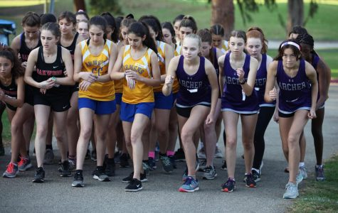 Varsity cross country sprints through season, reflects on triumphs, challenges