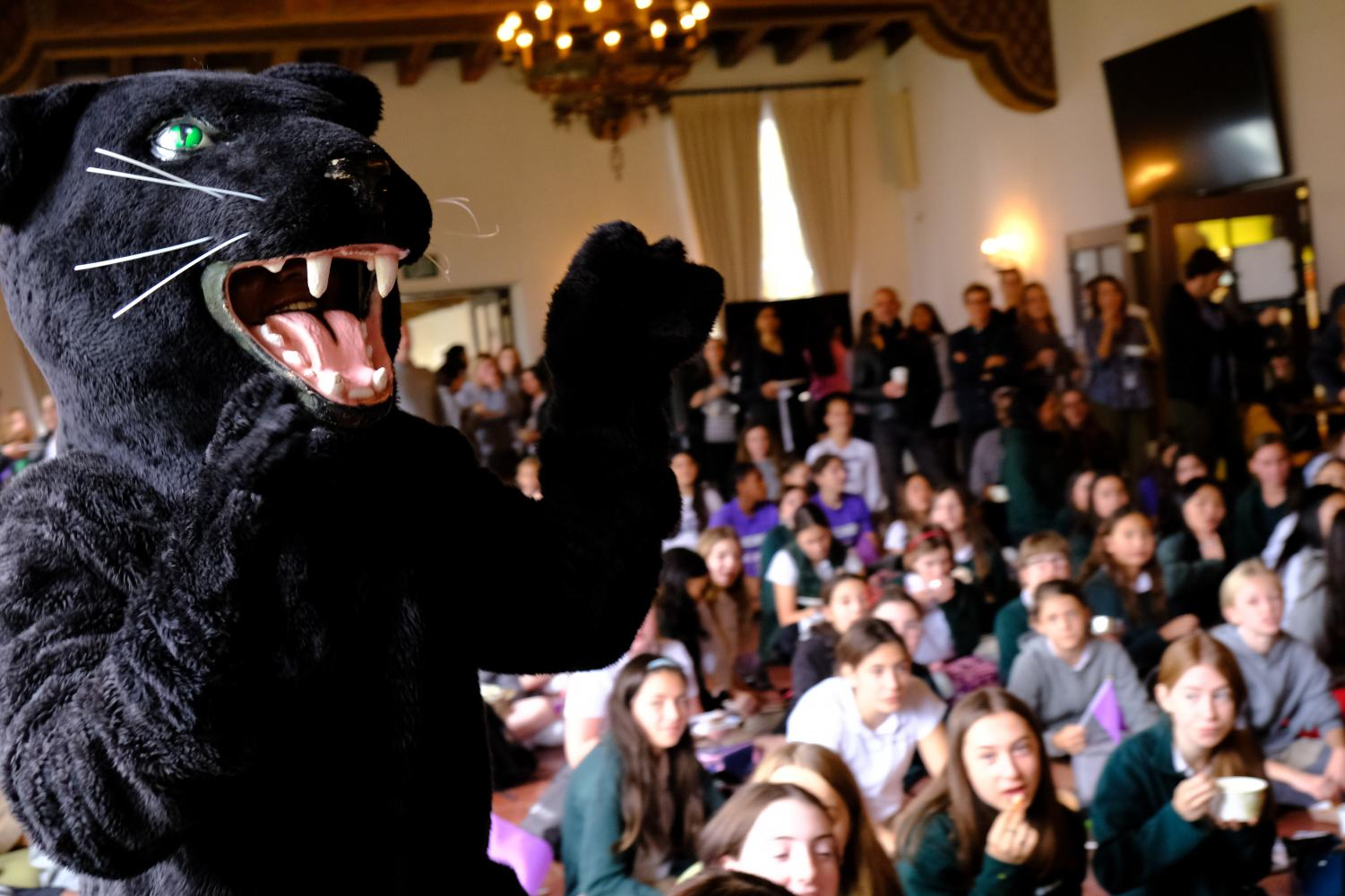 The Archer panther performs at the pep rally held in dining hall. The pep rally was held Nov. 20 for all fall sport athletes.