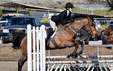 Emma London '21 and her horse jump over a fence during one of their shows this past season. The equestrian team participates in the Interscholastic Equestrain League, better known as the ECL.