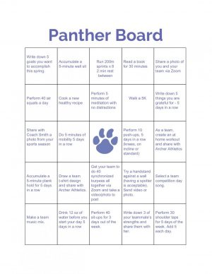 The Panther Board is a supplemental portion of the Panther Challenge. The squares within it provide some examples of challenges athletes are asked to complete in order to earn points and win prizes.