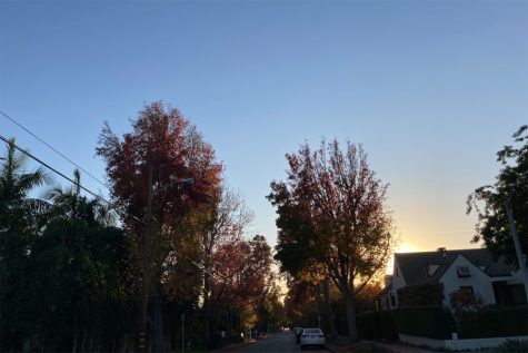 While LA foliage is not as well known as in other parts of the country, the warm weather and clear skies makes for a perfect viewing of the changing colors. Taking a stroll after class is a great way to reduce screen time and appreciate our surrounding nature.